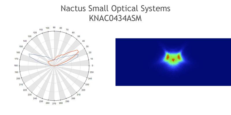 Nactus-SMALL