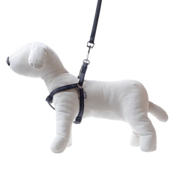 Soft Style - leash & harness set