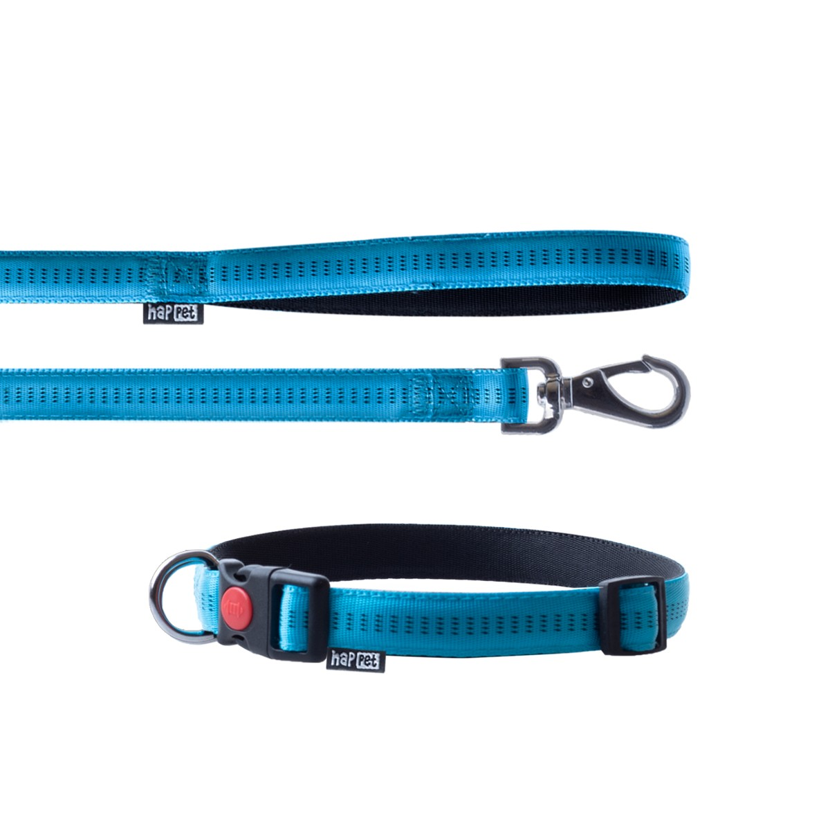 Nylon leash and collar set turquoise size XL 2.5cm
