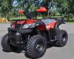 QUAD  ATV XY250ST-4B EURO3 AHO SHINERAY