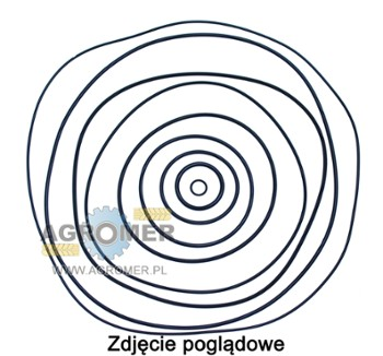 ORING 102,80X9,50 ZWOLNICA FENDT 600
