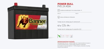 Banner Power Bull 50Ah/450A P5003