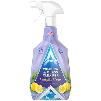 ASTONISH Spray 750ml Window (12)