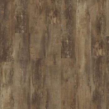 Panele MODULEO country oak 54875