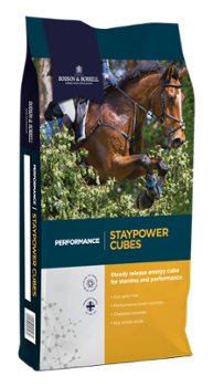 Dodson & Horrell Staypower Cubes 20kg