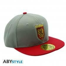 HARRY POTTER SNAPBACK CAP GREY RED GRYFF
