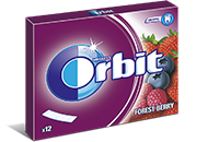 Orbit 12 listków Forest Berry /10/